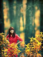 Autumn Dream by claudio88