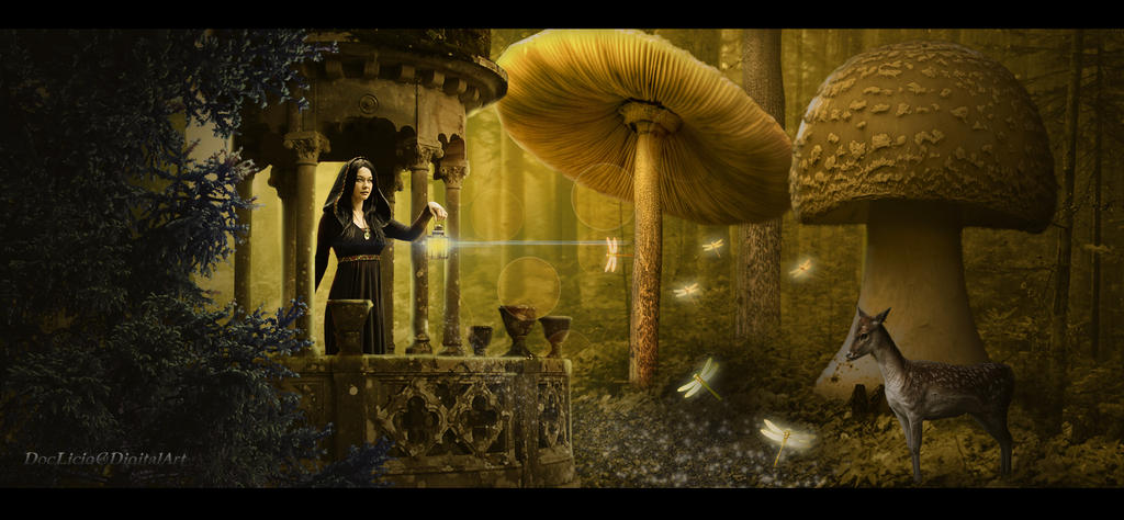 Fantasy World by doclicio