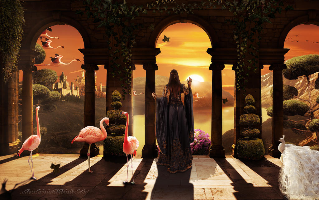 Flamingo paradise by doclicio
