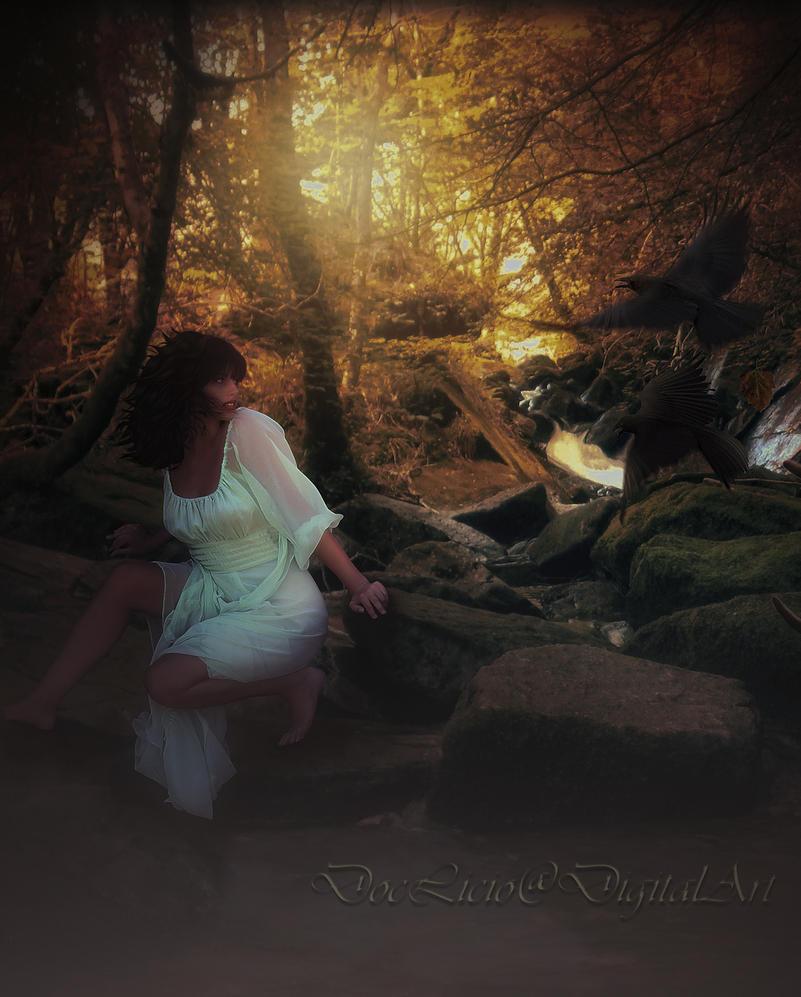 Woods by doclicio