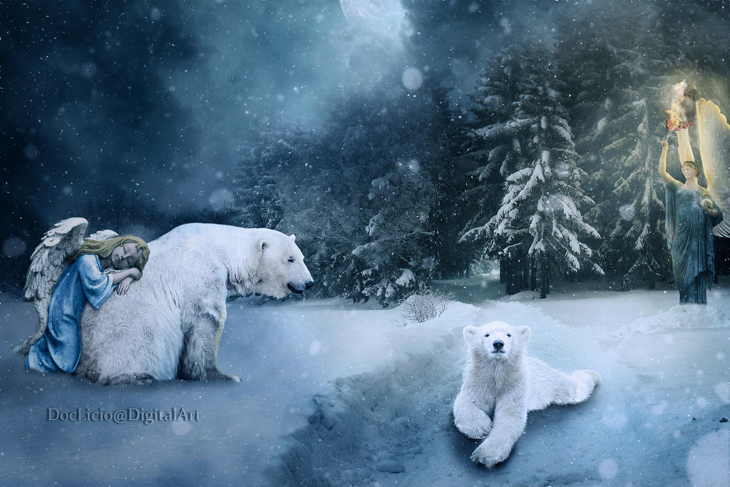 Winter Angels by doclicio