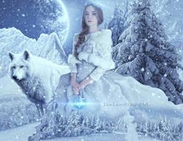 Winter Princess by doclicio