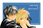 HP-Harry n Draco