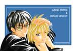 HP-Harry n Draco