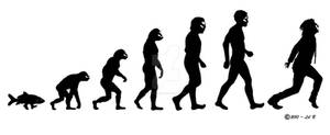 Tim Minchin Evolution