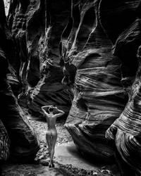 lost in the desert by cenevols