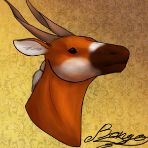NobiRobi's Profile Picture