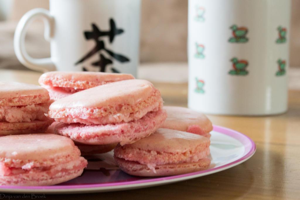 Yum yum Macarons! by DinjaDONUT