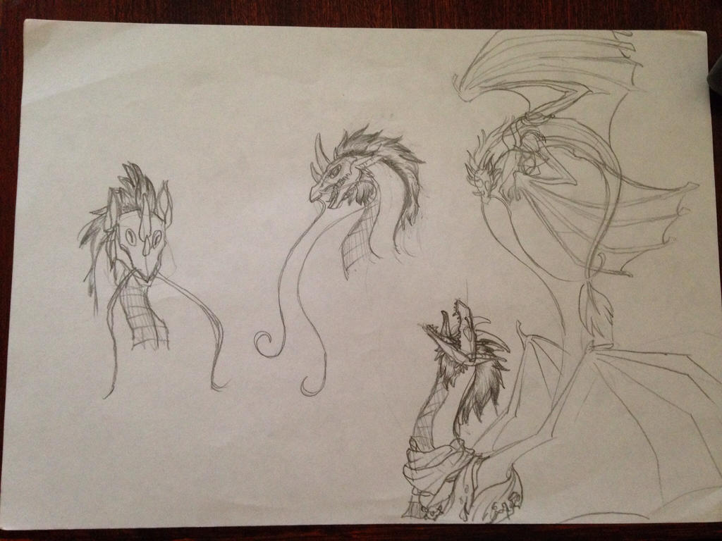 Quick Dragon Sketches by Rin-RyuShi