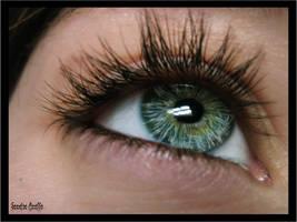 Dandelion eye by xXSidewinderXx