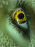 The eye of an elf