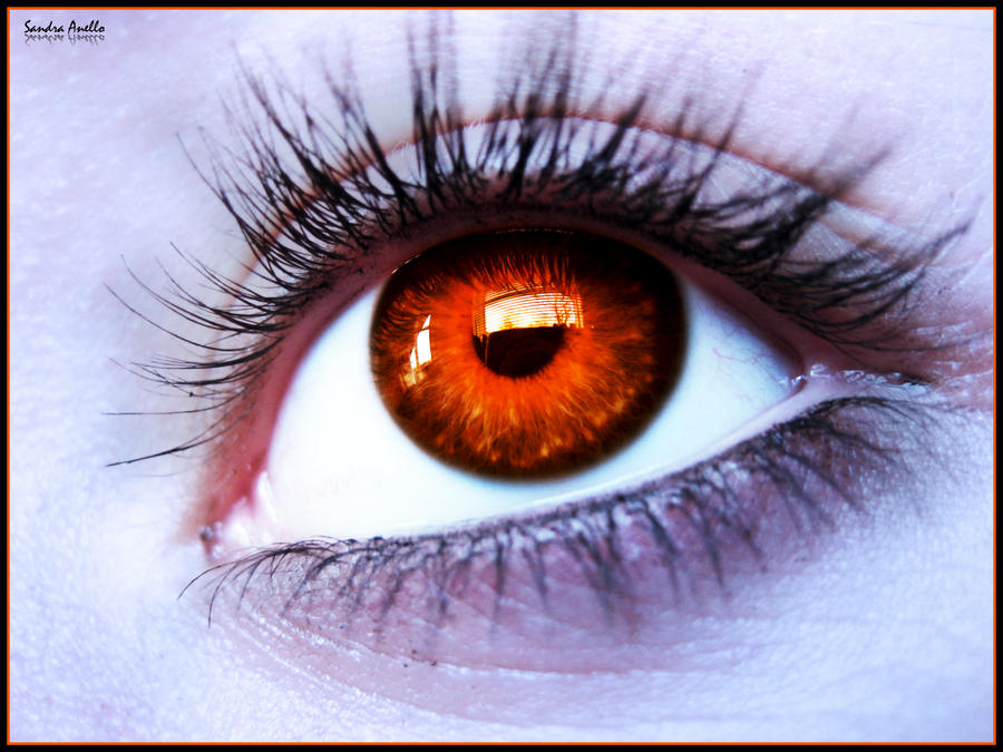 influenza and burning red eyes Best medicines for homeopathy for common cold & flu homeo under allium the edges of the eyelids burn and the eyes are red and burning in eyes and.