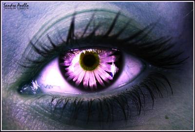 The eye of an elf 2 by xXSidewinderXx