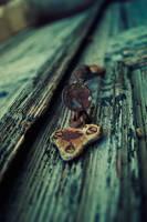 Old door by DakrErebus