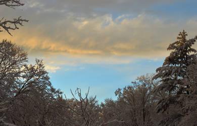 Winter Cream Sky by H-R-Germaine