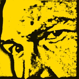 Svortress's Profile Picture