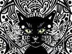 Kitty Rue