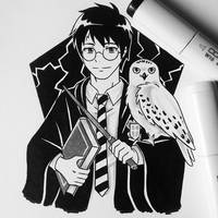 Harry Potter  by matyosandon