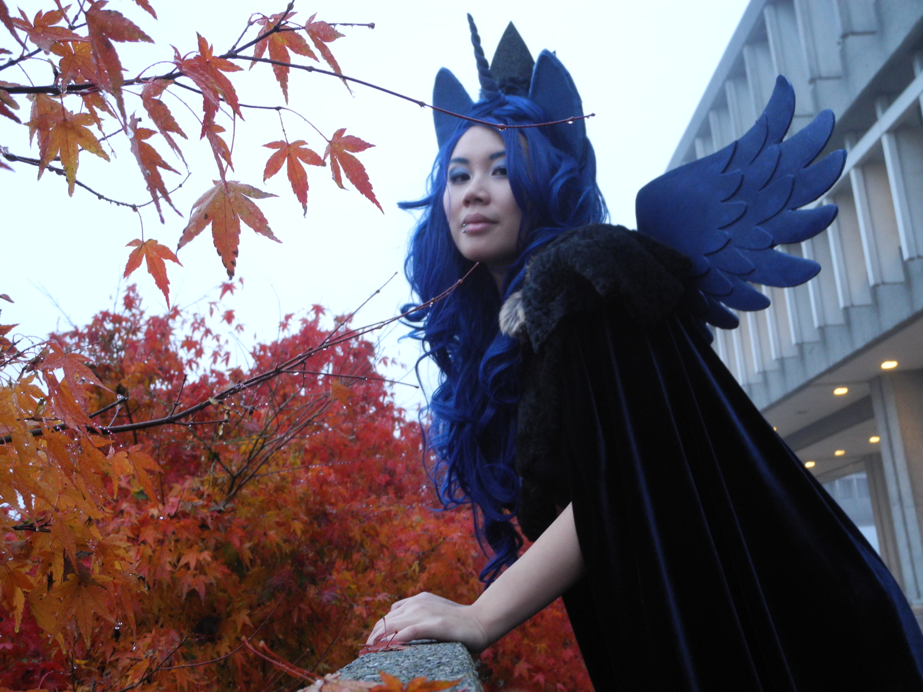 Princess Luna Cosplay Princess Luna Loyal Subjects By Highwindd Dnhpo