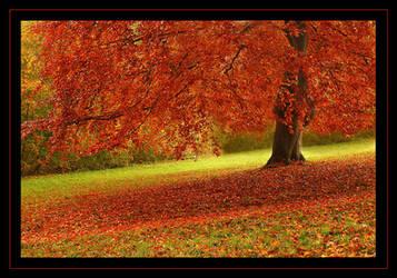 autumn by Hartmut-Lerch