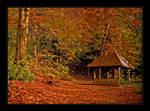 Autumn in Bavaria 2005