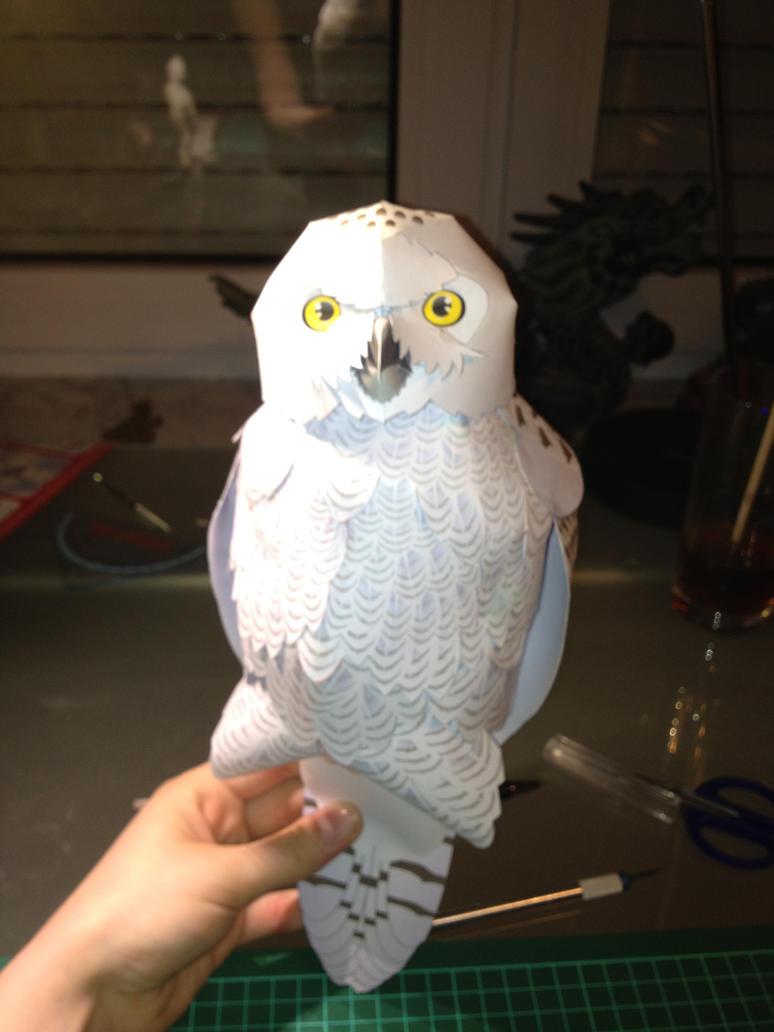 White owl papercraft by scarletheartfilia on deviantart white owl papercraft by scarletheartfilia jeuxipadfo Image collections