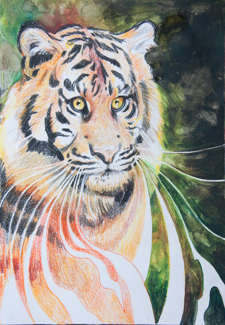 Tiger Spirit by rawenna