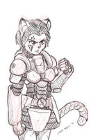 Armoured kitty...