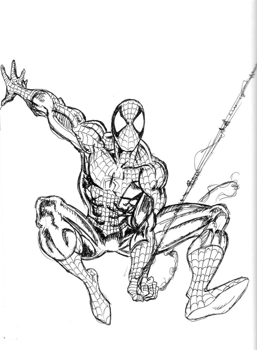 Pin stampa e colora spiderman disegni da colorare imagixs for Foto spiderman da stampare