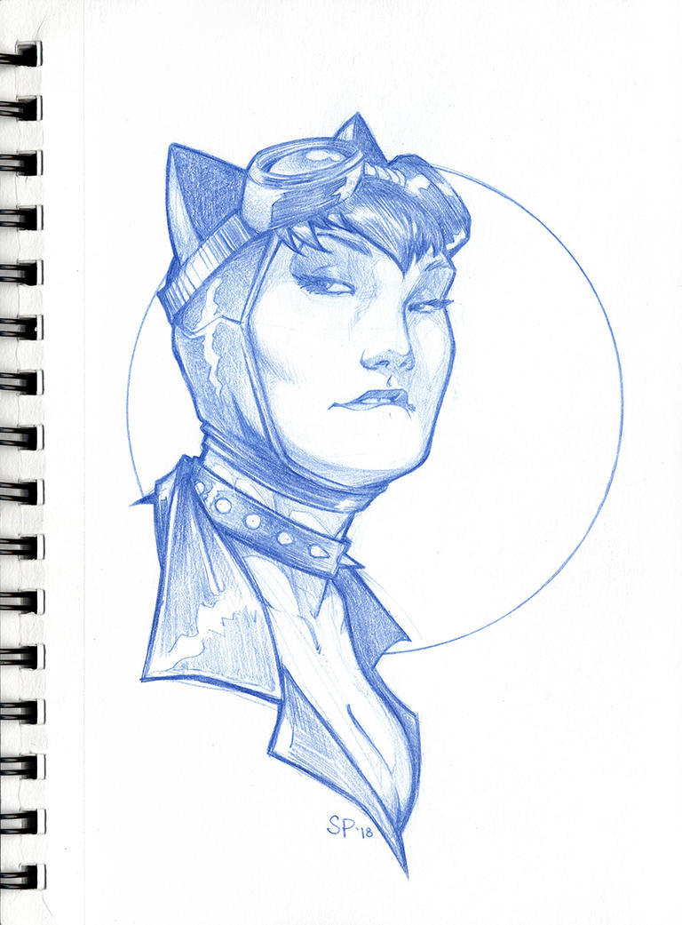 Catwoman by voya