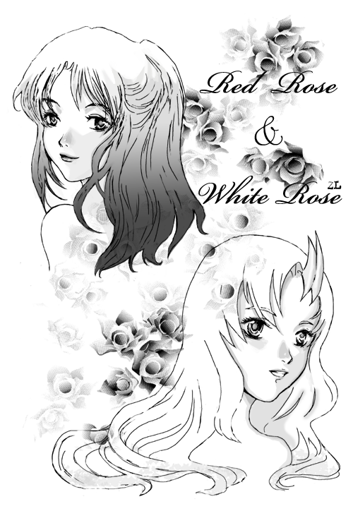 Red Rose - White Rose by zoelee