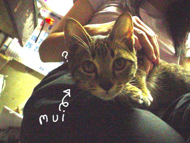 zoelee's Profile Picture
