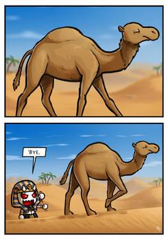 Desert Riddle