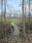 Trail Bridge by Strannik