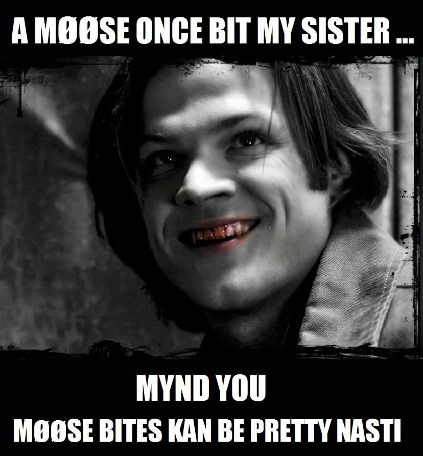 Moose Bite By Enginesummer On DeviantArt