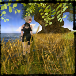 Second Life by Solbrio
