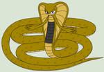 Bakari the cobra