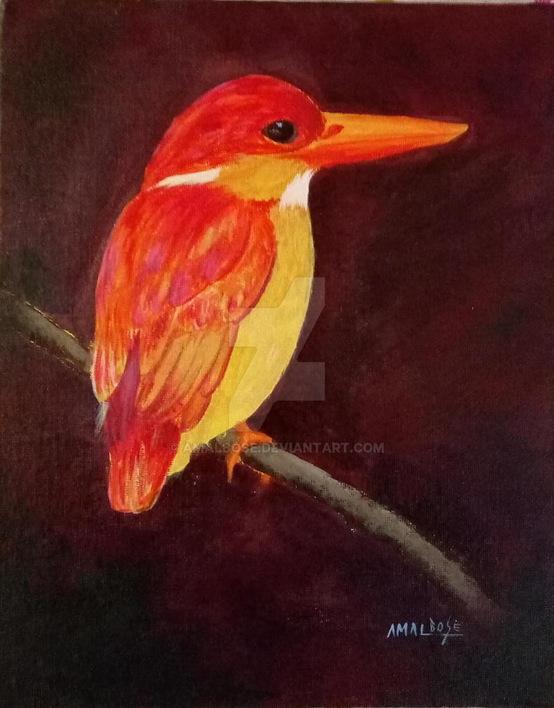 Kingfisher by amalbose