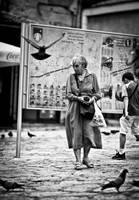 Just a tourist by jericho1405