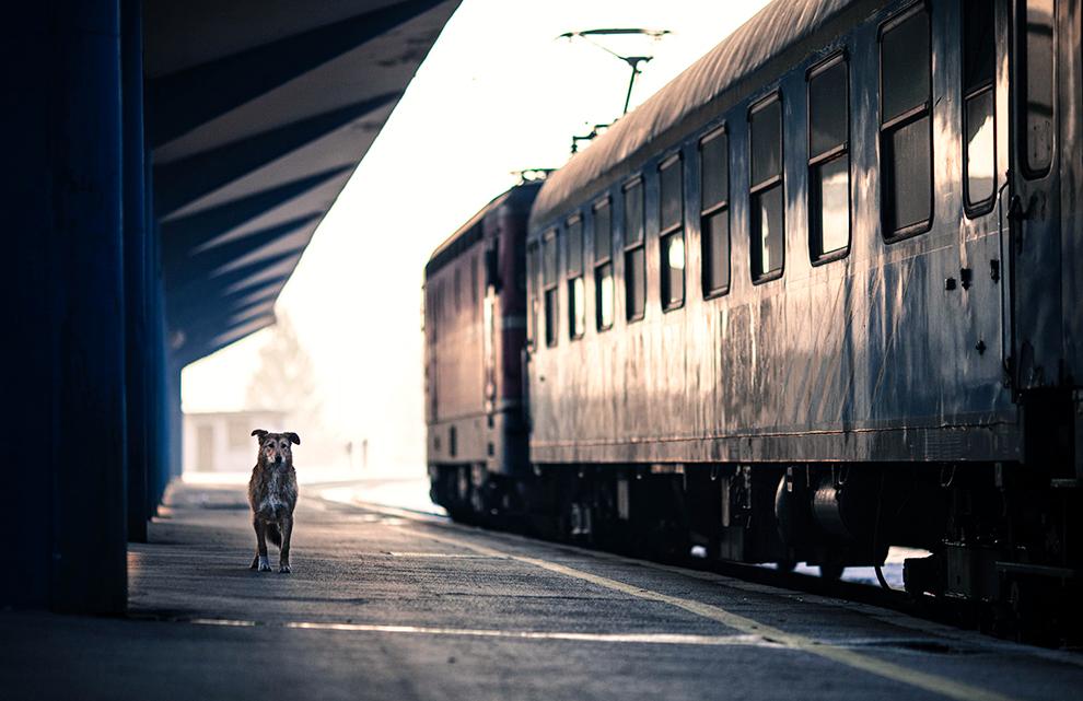 Railway station by jericho1405