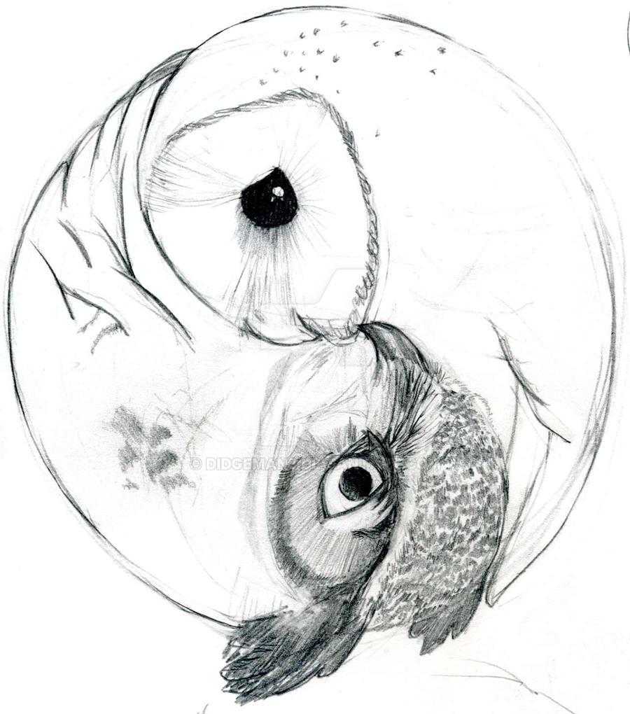 Yin Yang Owls by Didgeman3