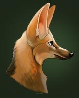 Maned wolf green