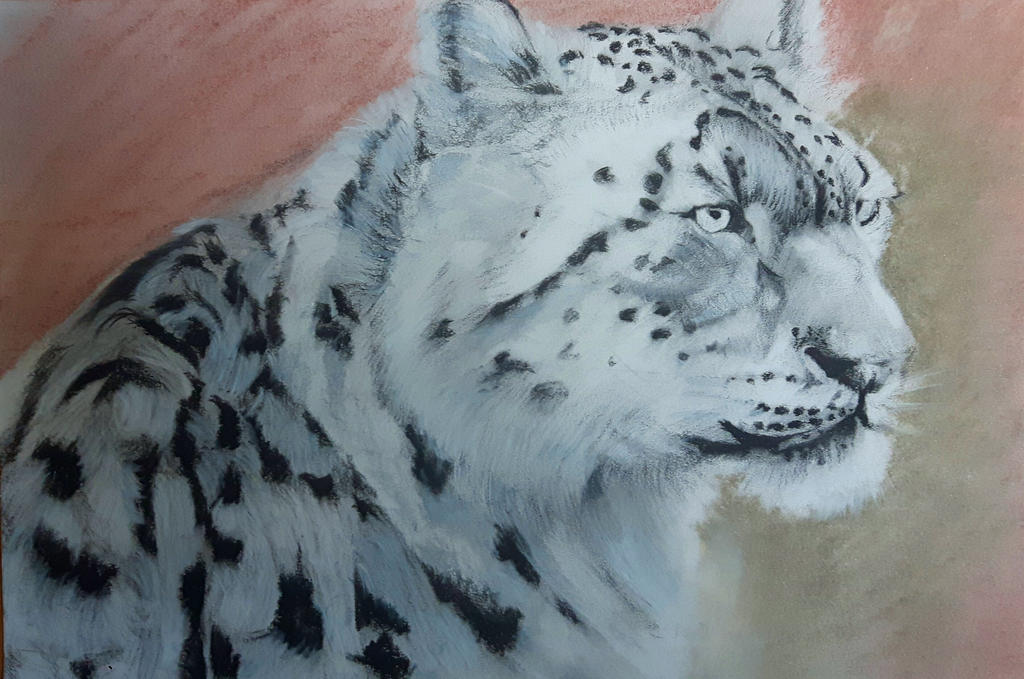 Snow leopard by green0