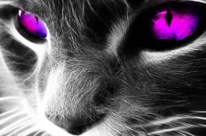 Violet Eyes by debzb17