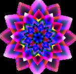 Wild Flower Fractal