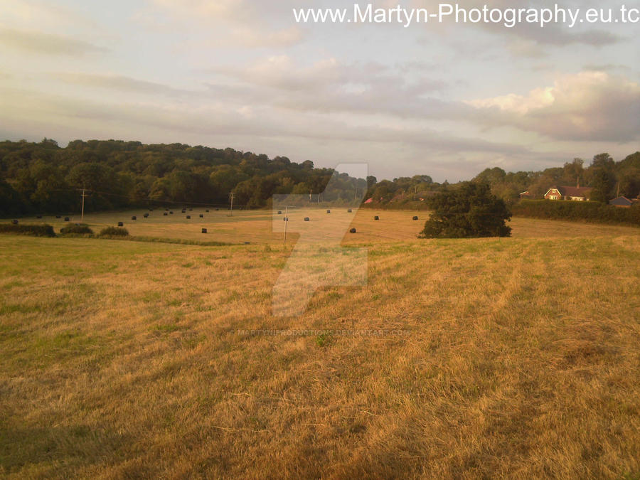 Martyn Photography - Pic 03 by MartyniProductions