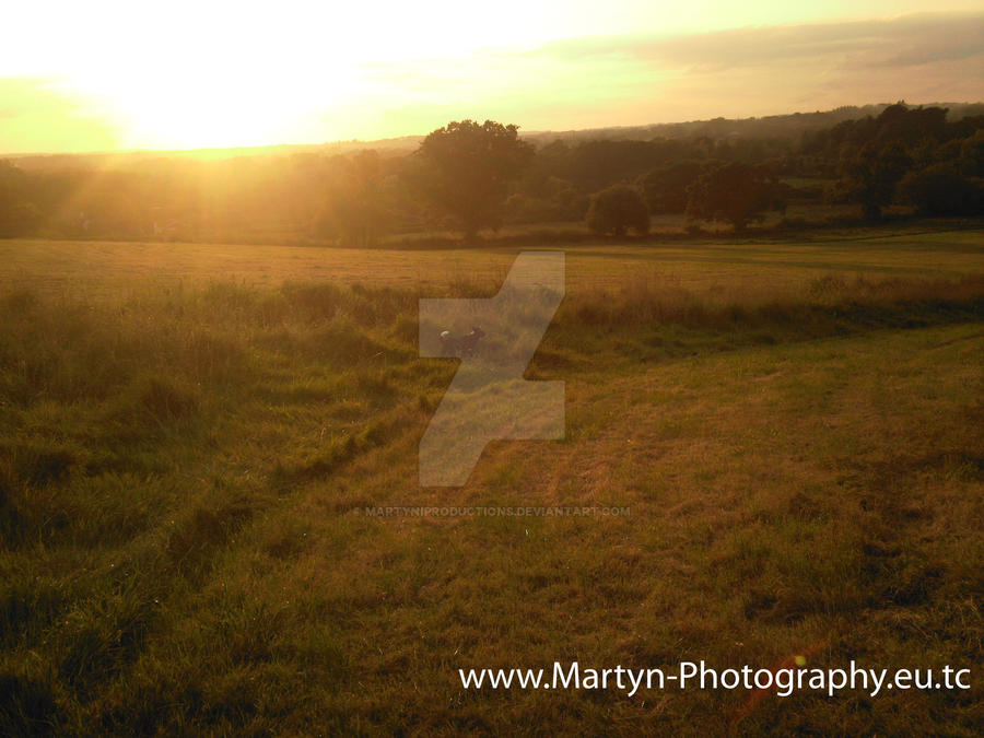 Martyn Photography - Pic 01 by MartyniProductions