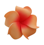 Tropical Flower PNG