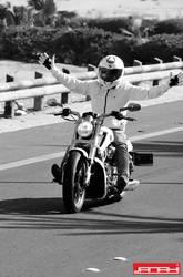 Harley Davidson VI