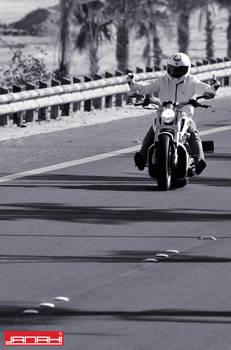 Harley Davidson VII